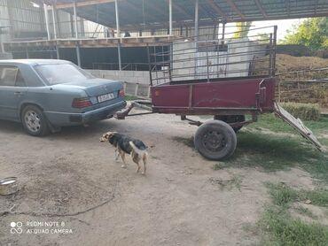 Прицепы - Кыргызстан: Продаётся прицеп самодельный усиленный