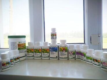 amway nutrilite в Кыргызстан: Витамины Nutrilite и продукции от компании Amway