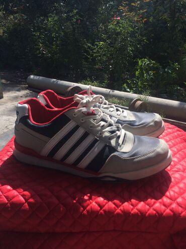 обувь для чихуахуа в Кыргызстан: 1. 43 размер муж обувь  2. 43 размер муж обувь  3. 42 размер муж обувь