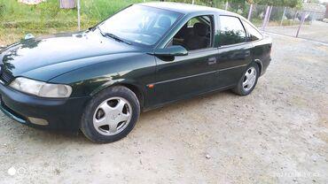 49 elan | NƏQLIYYAT: Opel Vectra 1.8 l. 1998 | 355528 km