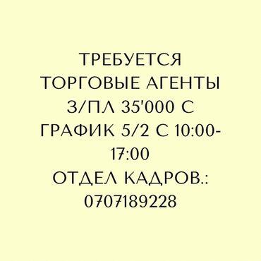 Торговые агенты - Кыргызстан: Требуется Торговые агентыЗ/пл 35'000сГрафик 5/2 Со знанием русского и