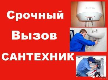 ad-image-50040952
