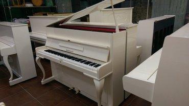 Bakı şəhərində Pianino - 1000 azn-den başlayan qiymet, 5 il zemanet.
