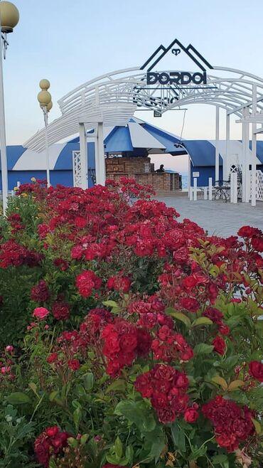 31 объявлений | ОТДЫХ НА ИССЫК-КУЛЕ: Коттедж, ДОРДОЙ Кош-Кол, Парковка, стоянка, Охраняемая территория, Закрытый пляж