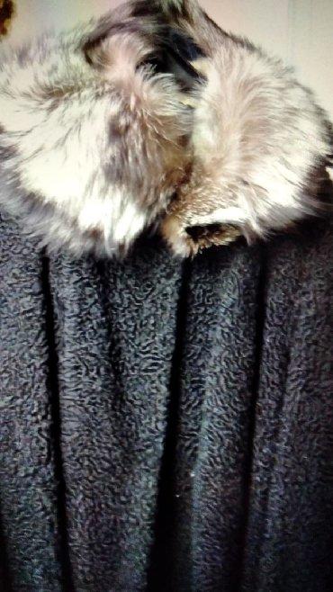 Sako-sa-ruskom-kragnom-punijeg-materijala-ici - Srbija: Astraganska bunda sa kragnom rakuna vrhunskog kvaliteta broj 40