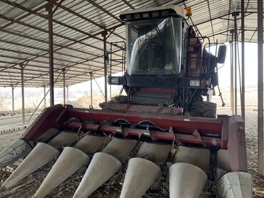 ячмень бишкек in Кыргызстан   ГРУЗОВЫЕ ПЕРЕВОЗКИ: Услуги комбайын ячмень зерно кукуруза По Чуй