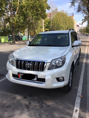 Toyota Land Cruiser Prado 2010 в Лебединовка