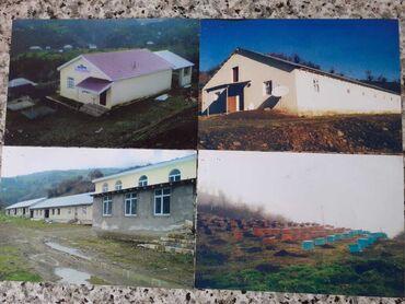 Продам - Азербайджан: Obyekt:Lənkəran -Lerik yolunun 20-ci km-dən 14 km uzaqliqda Lerik r-un