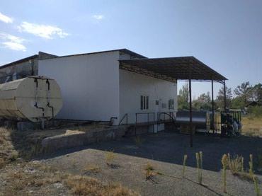 Продаю Масло сыр завод в Беловодске, в Бишкек