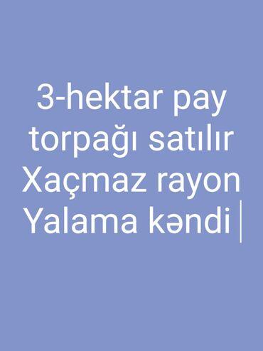 Torpaq sahələrinin satışı - Xudat: Torpaq sahələrinin satışı 3000 sot Kənd təsərrüfatı, Mülkiyyətçi