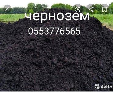 чернозем в Кыргызстан: Чернозем чернозем чернозем чернозем чернозем чернозем чернозем