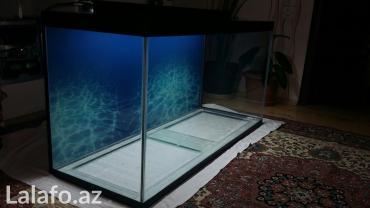 Bakı şəhərində teze hazirlanip 325 litrelik akvarium 10mll wuwenin qalinliqi qapaqi v