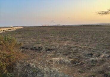 Torpaq sahələrinin satışı 6 sot Biznes üçün, Mülkiyyətçi, Bələdiyyə