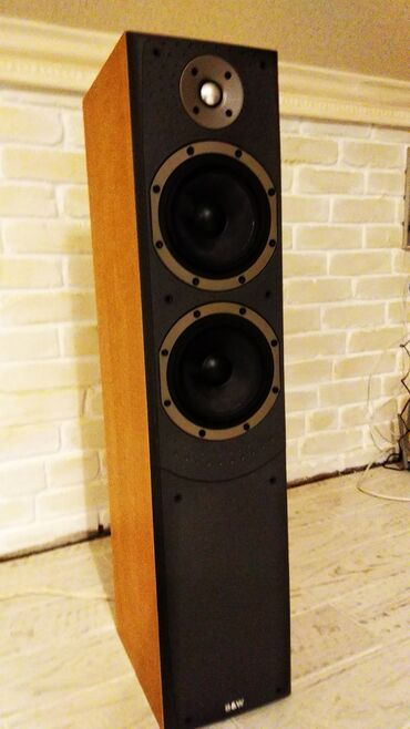 Bowers & Wilkins DM 309 Напольная акустика 1метр. Сосьог идеально
