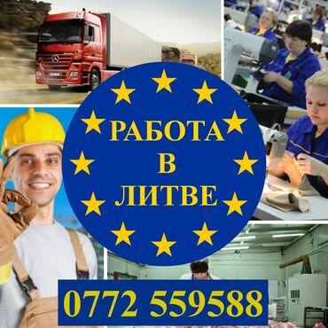 сколько стоит рабочая виза в южную корею в Кыргызстан: Легальная работа в ЛитвеРазрешение No 000443По годовой рабочей визес
