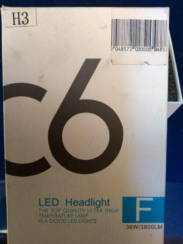 C6 led sijalice H3 - Nis