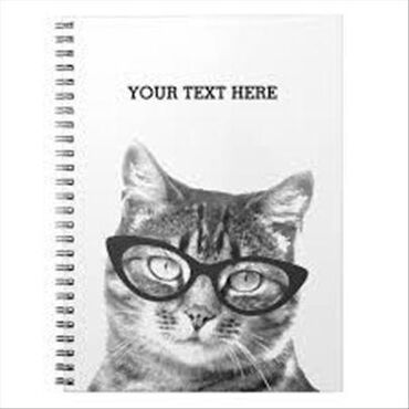 Pisanje svih vrsta tekstova-eseja, sastava, radova, studija, analiza