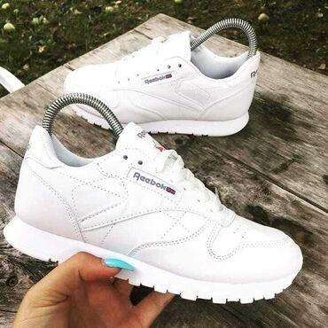 Cipele 36 - Srbija: Reebok Classic bele patike takodje stigle u svim brojevima od 36 do 41