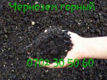 Продаем:Чернозем горный плодородный в Бишкек