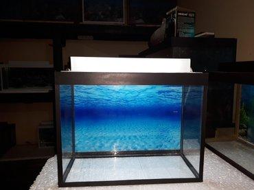 Bakı şəhərində Akvarium teze 24 litrelik