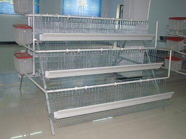 Животные - Сретенка: Продам Российские клетки для кур несушек 5комп. На 480кур цена 1 кмп