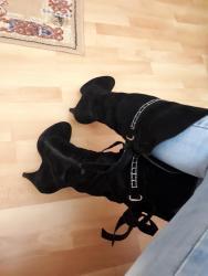 Prelepe crne duboke elegantne cizme 40br. Sa stiklom, malo nosene