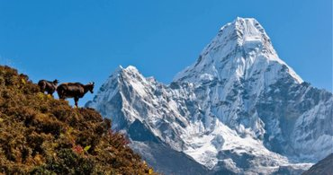 Everest Base Camp Budget trekking for backpackers and students at in Kathmandu