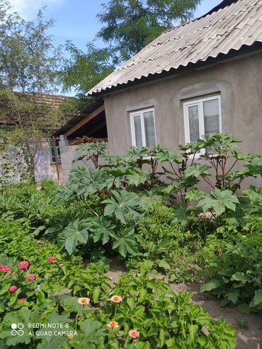 Недвижимость - Беловодское: Продам Дом 49 кв. м, 2 комнаты
