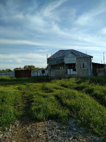 - Azərbaycan: Ferma satılır Ismayilinin keyvendi kendinden teze çekilsmis