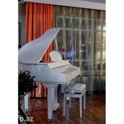 Bakı şəhərində Medeli(İtaliya) Pianinoları, Musiqialətləri, Aga music group