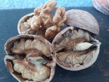 Продаю орехи оптом 120 сом кг