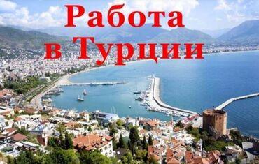 """вакансия психолога в Кыргызстан: Работа в Турции. от компании """"Юниверс"""" В 5* отелях знаменитых курортов"""