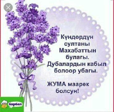 уборщица подработка в Кыргызстан: Техничка. 2/2. Джал