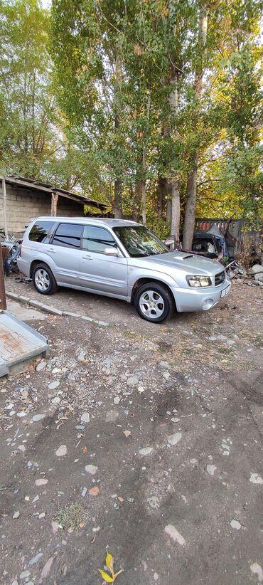 процент деньги бишкек in Кыргызстан | ЛОМБАРДЫ, КРЕДИТЫ: Subaru Forester 2 л. 2002 | 36545 км