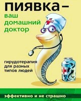 Продаю Пиявки Оптом розницу из России  в Бишкек