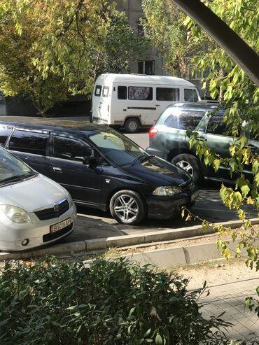 диски на авто в Кыргызстан: Honda Odyssey 2.3 л. 2003 | 220000 км