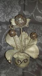 Dekorativni kafa cvet - Krusevac