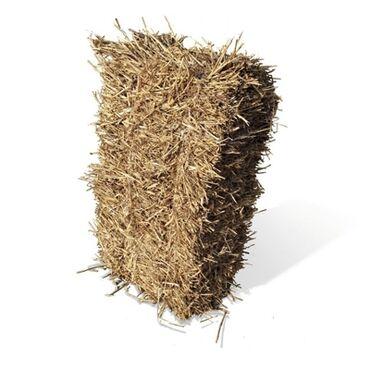 Животные - Чон-Арык: Куплю сена саман