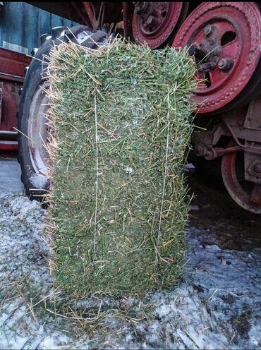 постельное белье kenzo китай в Кыргызстан: Метровые тюки клевера продаю клевертюк весит от 20 кгвсе зелёные