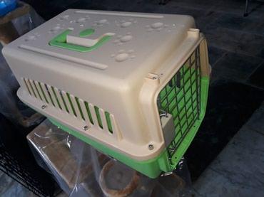 Bakı şəhərində It ve pisiklerin dasinmasi ucun  konteyner tezedir. catdirilma