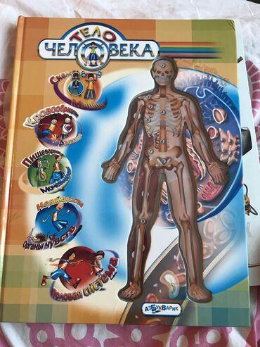 Детская книга ТЕЛО ЧЕЛОВЕКА, объёмная. Брали за 30 манат