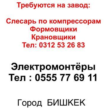 торговый агент с личным авто бишкек в Кыргызстан: Требуются :  электромонтёры  Формовщики Крановщики Слесарь по компресс