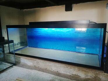 Təzə akvarium120 sm uzunuBaşqalarıda var seçim coxduSifarişlər qəbul