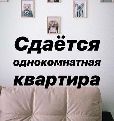 Столяр бишкек - Кыргызстан: Сдается квартира: 1 комната, 15 кв. м, Бишкек