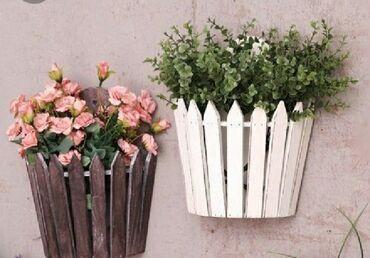 Bitkilər üçün dibçəklər