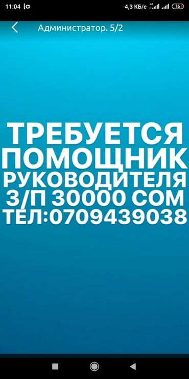 менеджер по вэд в Кыргызстан: Менеджер по продажам. 5/2