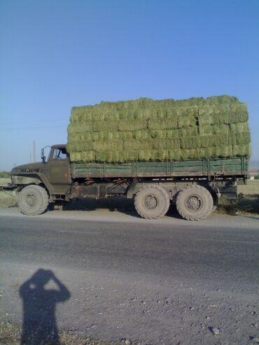 машина урал в Кыргызстан: Продаю урал 4320 длинный двигатель ямз 238 10 тон машина заводская