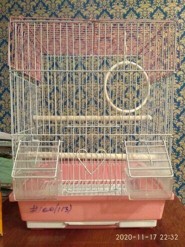 накидка на клетку попугая в Кыргызстан: Продаю клетку для попугаев почти новая состояние отличное,в комплект