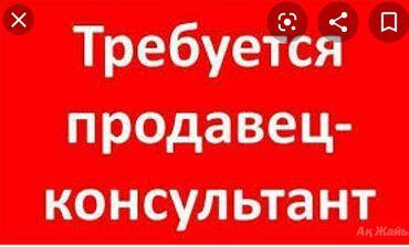Работа - Бишкек: Продавец-консультант. Без опыта. 5/2