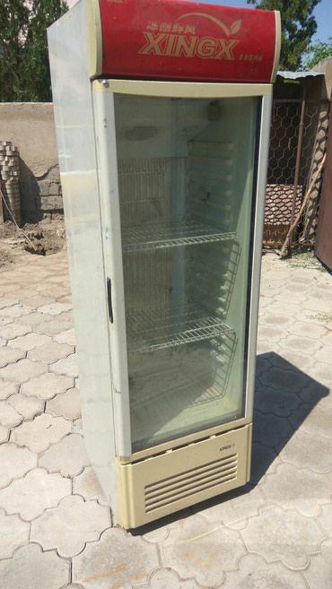 Холодильник для напитков  сдаю в аренду   в Чолпон-Ате